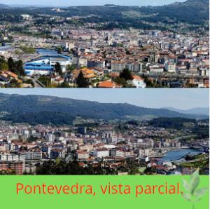 Camino de Santiago portugués, Pontevedra.