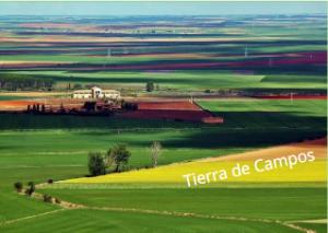 Comarca de Tierra de Campos.